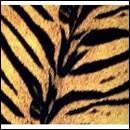 タイガーモービル