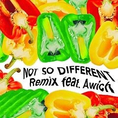 Not So Different Remix feat. Awich