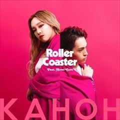 Roller Coaster (feat. Novel Core)
